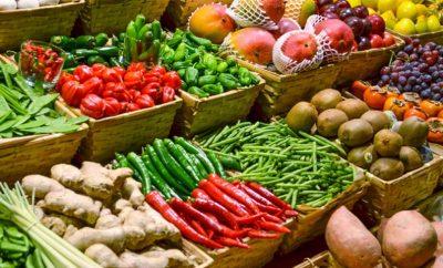 Açores querem duplicar produção em modo biológico em 10 anos