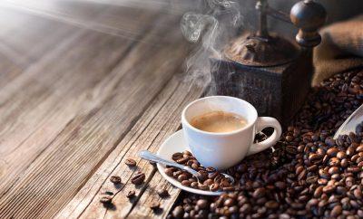Produção de café está em expansão nos Açores e conta com cerca de 50 produtores